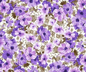 floral and backgrounds image
