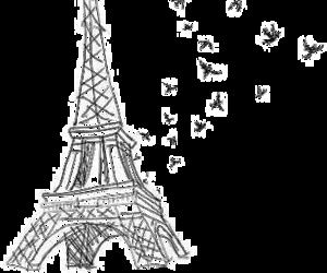 paris, bird, and eiffel tower image