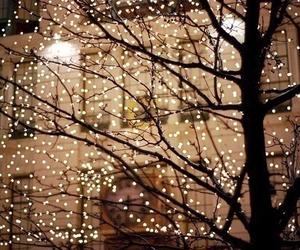 beautiful, christmas tree, and fairy lights image