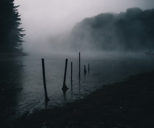 photography, dark, and fog image