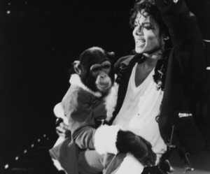 bubbles and michael jackson image