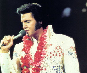 concert, Elvis Presley, and king of rock and roll image