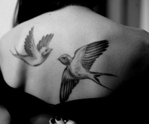 birds, tatto, and two image