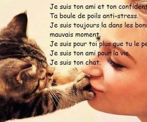 chat and french image