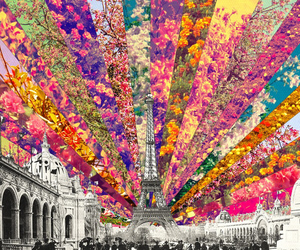 flowers, paris, and color image