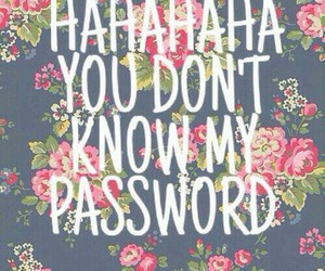 password, wallpaper, and flowers image