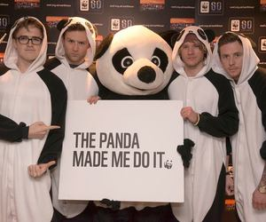 McFly, panda, and danny jones image