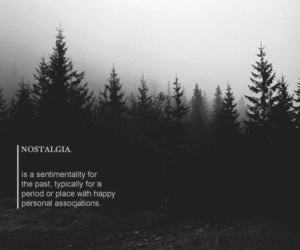 black, forest, and grunge image