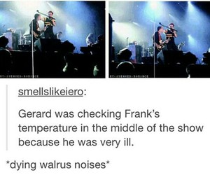 frank, frerard, and my chemical romance image
