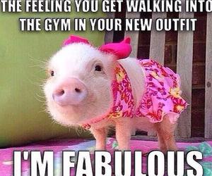animal, fitness, and pink image