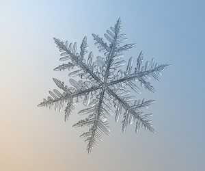 snowflake, snow, and winter image