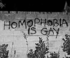 gay, homophobia, and wall image