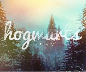 hogwarts, harry potter, and potterhead image