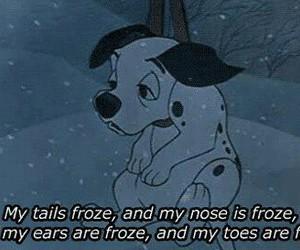 dog, disney, and winter image