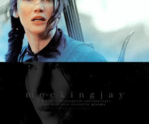 mockingjay, katniss, and hunger games image