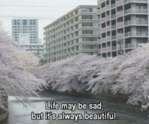 life, sad, and beautiful image