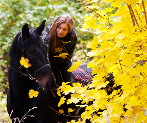 animals, autumn, and beauty image