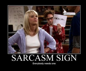 sarcasm, funny, and penny image
