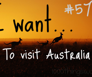 australia, kangaroo, and travel image