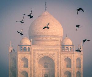india, beautiful, and taj mahal image