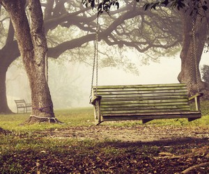 autumn, leaves, and swing image