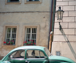 car, flowers, and buildings image