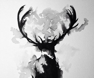 art, deer, and black and white image