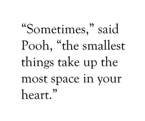 little things, pooh, and quote image