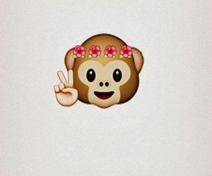 flowers, hawaii, and monkey image