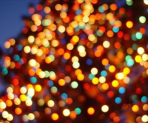 christmas, light, and december image