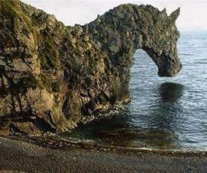 horse, nature, and sea image