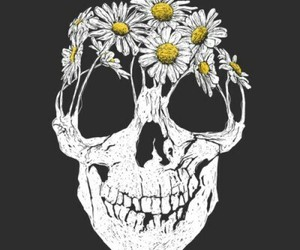 skull, flowers, and daisy image