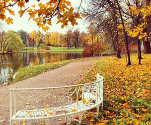 autumn, water, and beautiful image