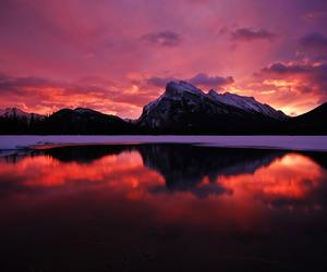 beautiful nature winter image