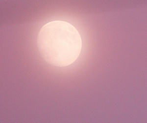 full moon, lilac, and mauve image