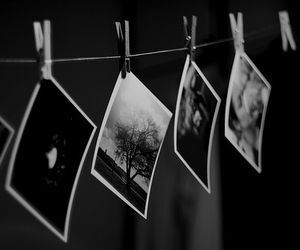 black and white, photo, and photography image