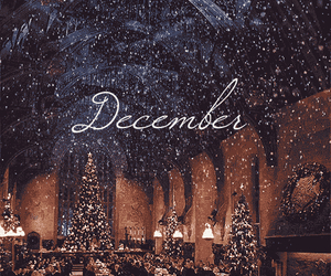 christmas, harry potter, and december image