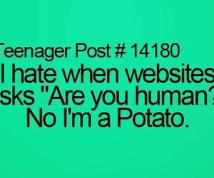 human, potato, and funny image