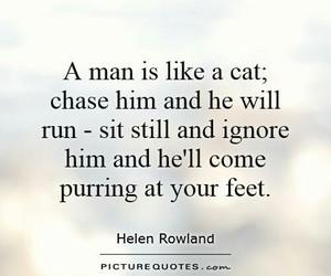 quote, cat, and true image
