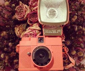camera, vintage, and pink image