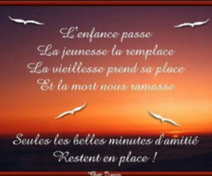 citations proverbes image