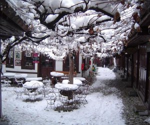 turkey, cafe, and snow image