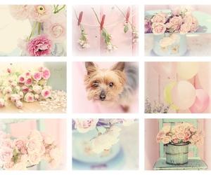 amazing, fashion, and pastel image