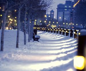 light and snow image