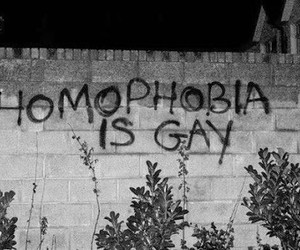 gay, homophobia, and wall image