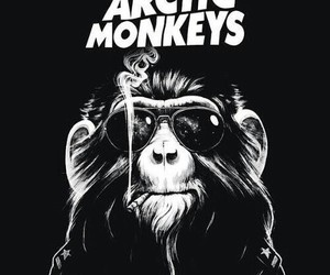 arctic monkeys, monkey, and music image