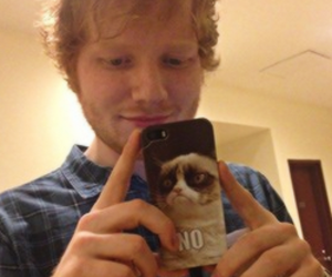 ed sheeran, ed, and grumpy cat image