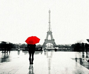 autumn, black and white, and france image