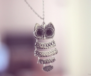 owl, cute, and pretty image