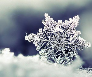 cold, snow, and snowflake image
